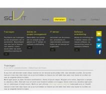 ontwerp website sdvit